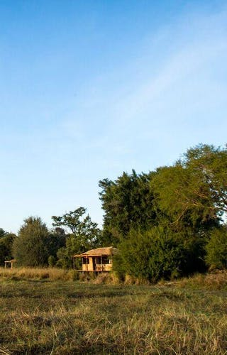 Musekese Bush Camp View