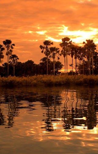 Mvuu Camp Sunset Over Shire River