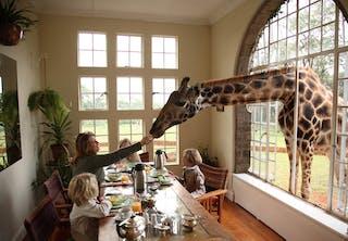 Giraffe  Manor Family Breakfast