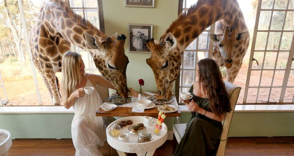 Giraffe Manor Dining