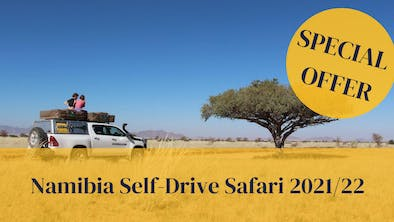 Namib Special Offer 22