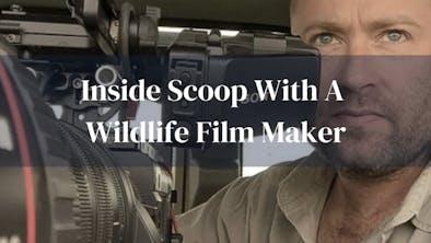 Nick Ball Wildlife Film Maker