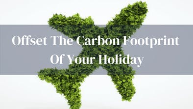 Offset Holiday Carbon Footprint