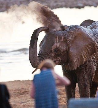 Okaukuejo Camp Safari