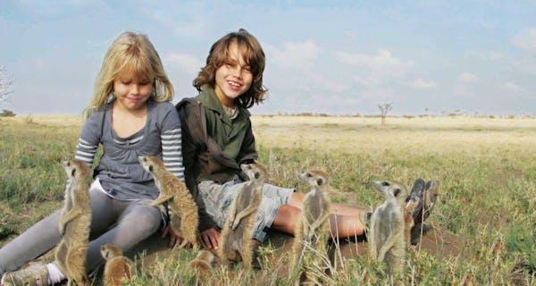 Planet Baobab Meerkat Visit