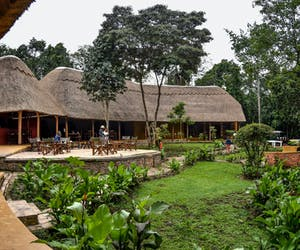 Primate Lodge Front View