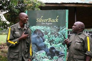 Gorilla Briefing Edward Francois Xa African Safaris
