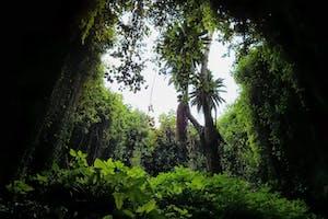 Musanze  Caves  Prime  Uganda  Safaris