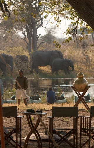 Selinda Explorers Camp Elephants