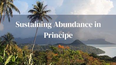 Sustaining Principe