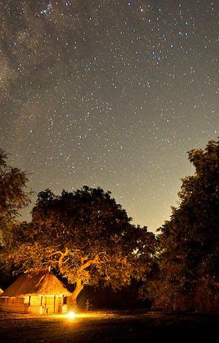 Tafika Camp Stargazing