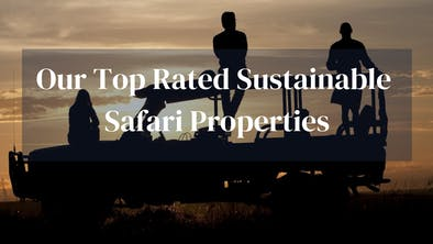 Top Sustainable Safari Lodges
