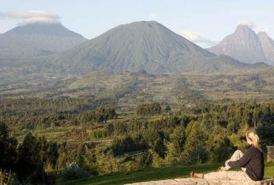 Honeymoon Virunga Volcanoes A Volcanoes Safaris