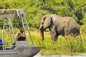 River  Nile  Boat  Trip  Wild  Frontiers  Uganda