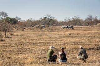 Walking Safari Kruger National Park