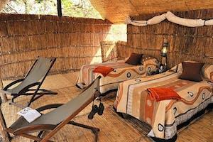 Chikoko Tree Camp Twin Room
